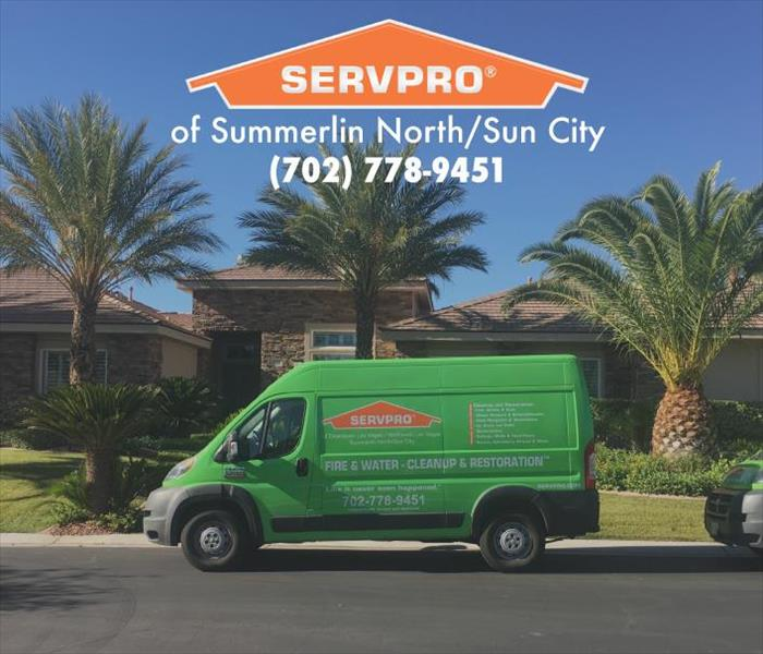 SERVPRO van parked between palm trees.